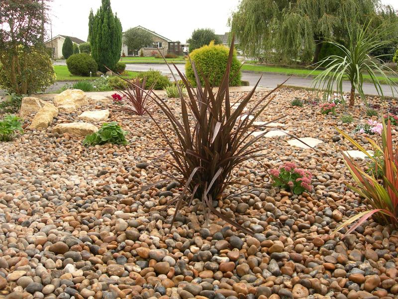 A low maintenance front garden gbd garden design for Low maintenance garden